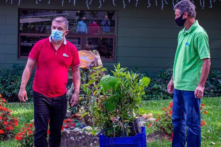 silencio-lodge-plantation-arbre-costa-rica-decouverte