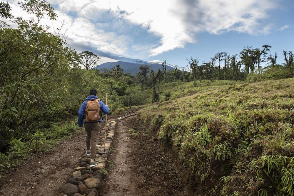 silencio-lodge-plantation-cover-costa-rica-decouverte