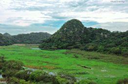 foret-nuageuse-de-palo-verde-cover-costa-rica-decouverte