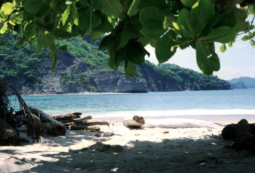 voilier-isla-tortuga-costa-rica-decouverte