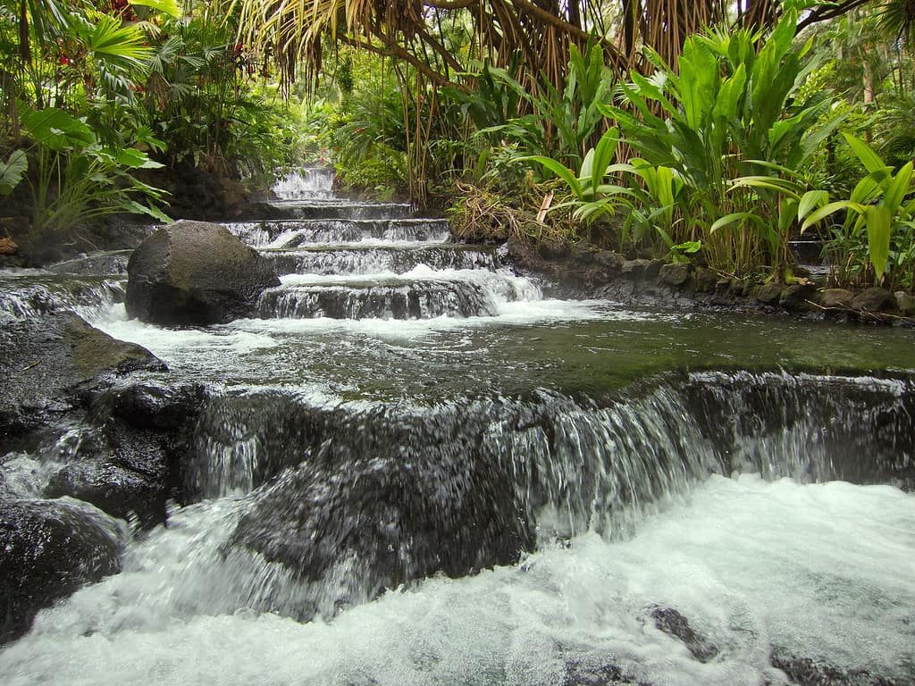 arenal-eaux-thermales-costa-rica-decouverte